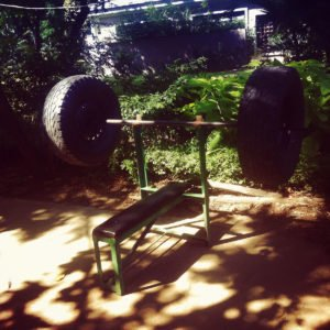 lumpinee park benchepressing with truck wheels