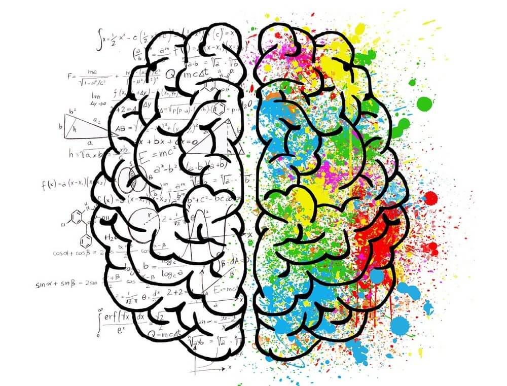 Integratori per la memoria: tutto quello che devi sapere